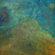 Transició de Medusa/Jellyfish's transition